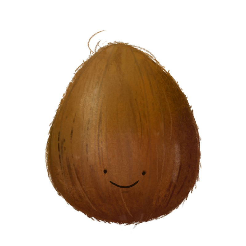 An illustrated coconut with a simple smiley face