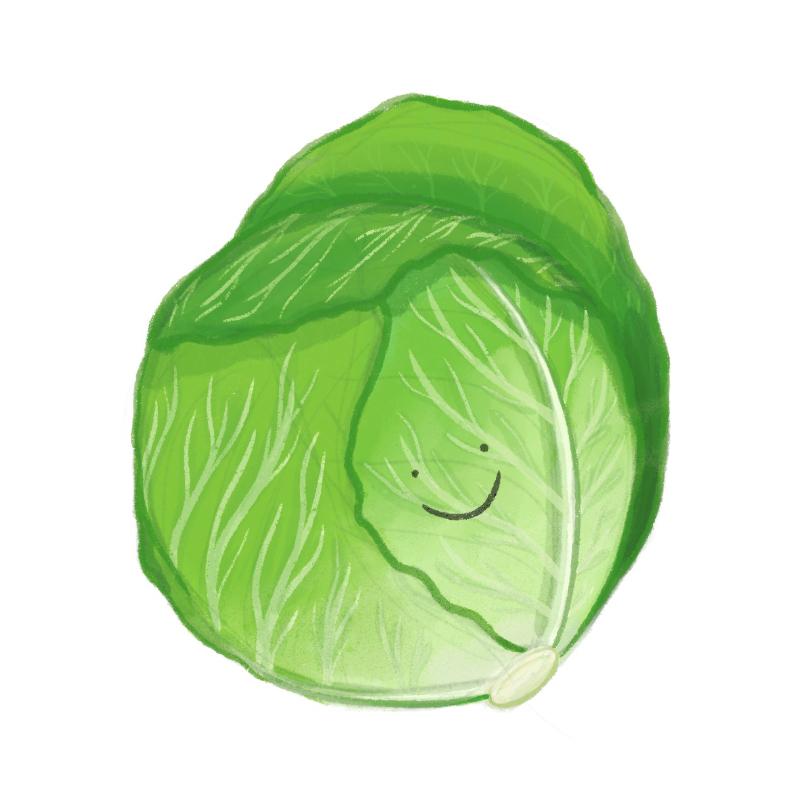 An illustrated head of lettuce with a simple smiley face
